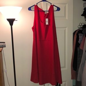 NWT Loft Textured Red Dress